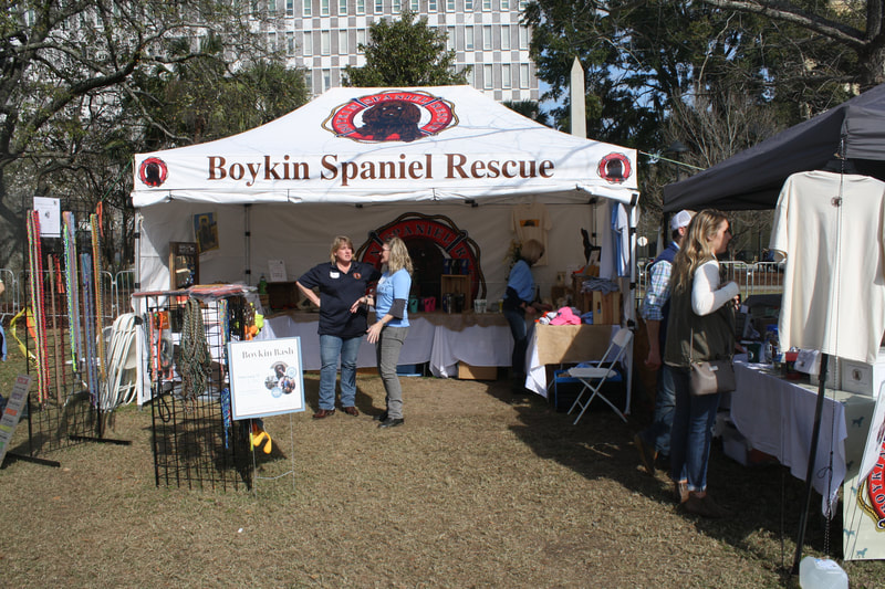 In The News - Boykin Spaniel Rescue, Inc
